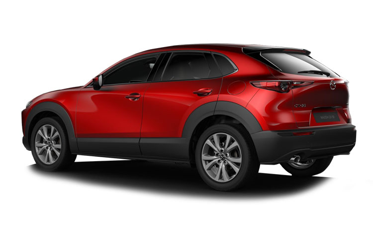 Mazda CX-30 SUV 2.0 SKYACTIV-X MHEV 180PS 100th Anniversary Edition 5Dr Manual [Start Stop] back view